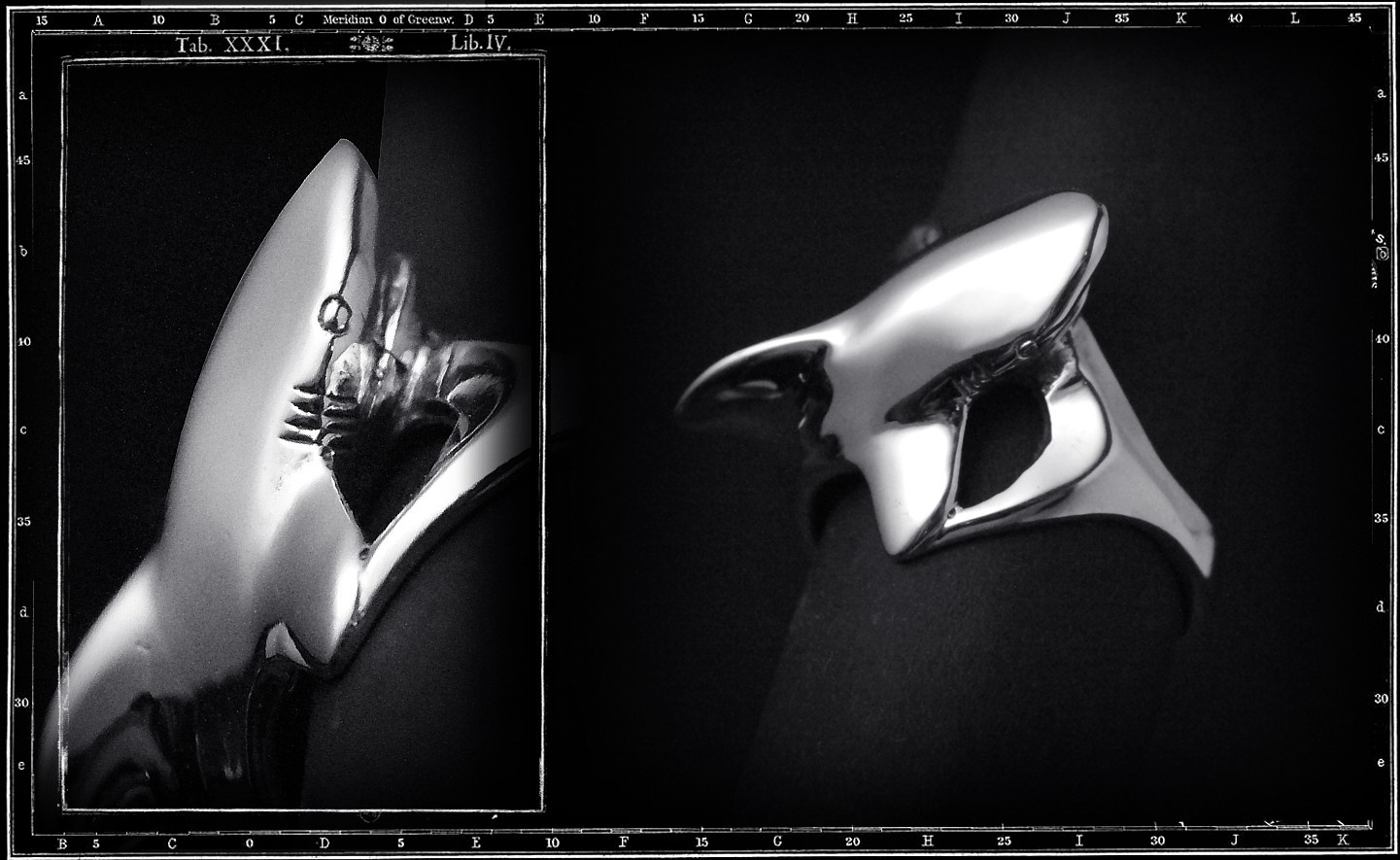 SHARK (WHOLEBODY) RING