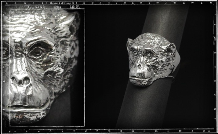 Chimpanzee ring