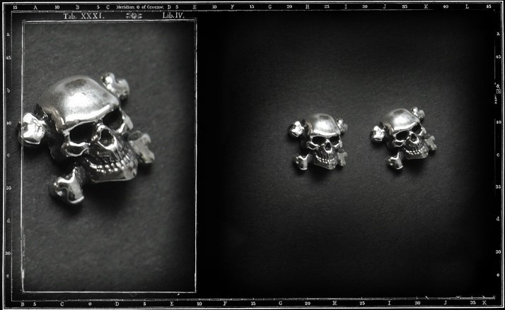 Skull & cb stud earrings
