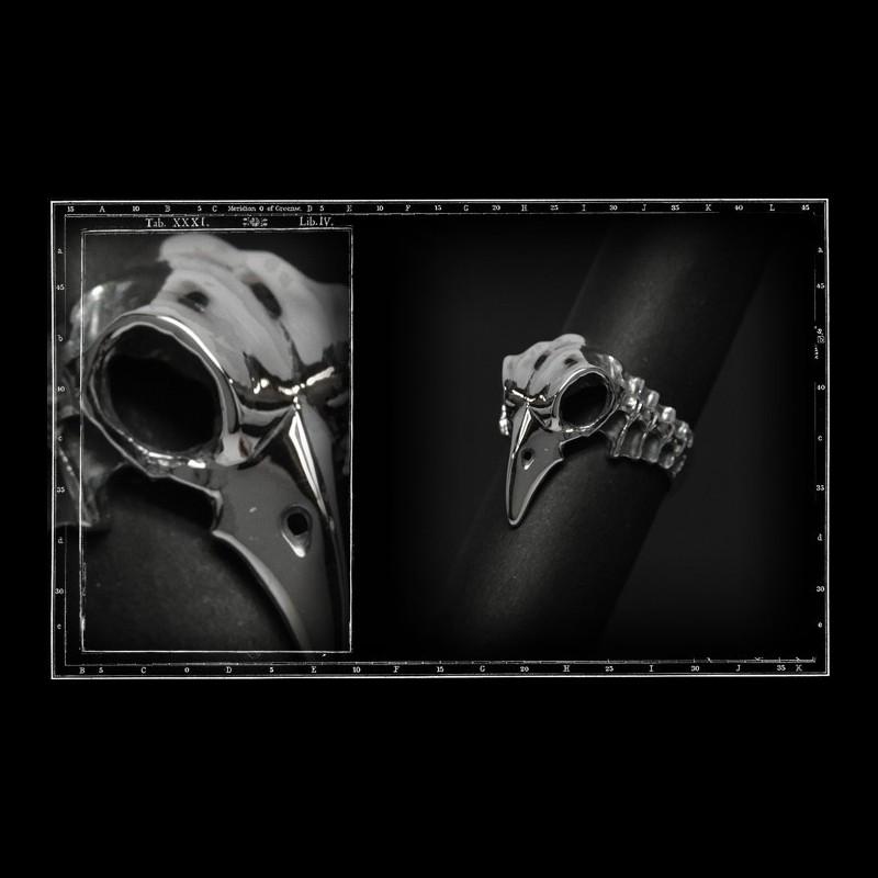 Bird skull ring & spine