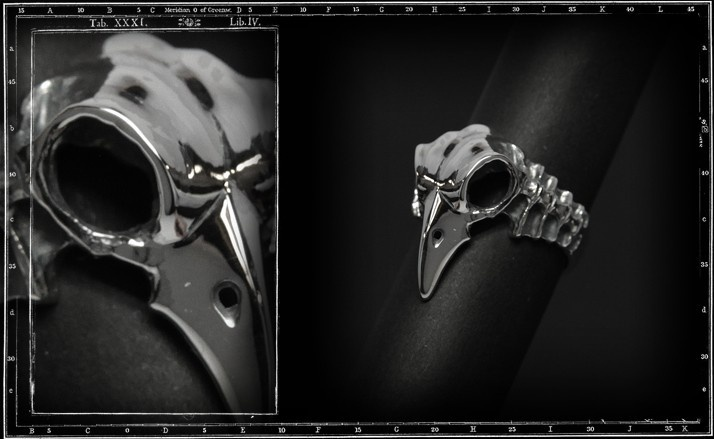 Bird skull ring & spine