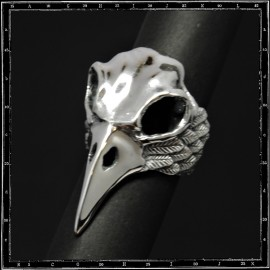 Large bird skull ring & feathers