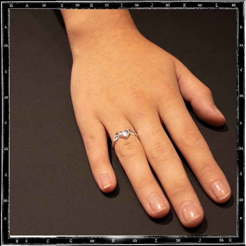 Small heart & wings ring