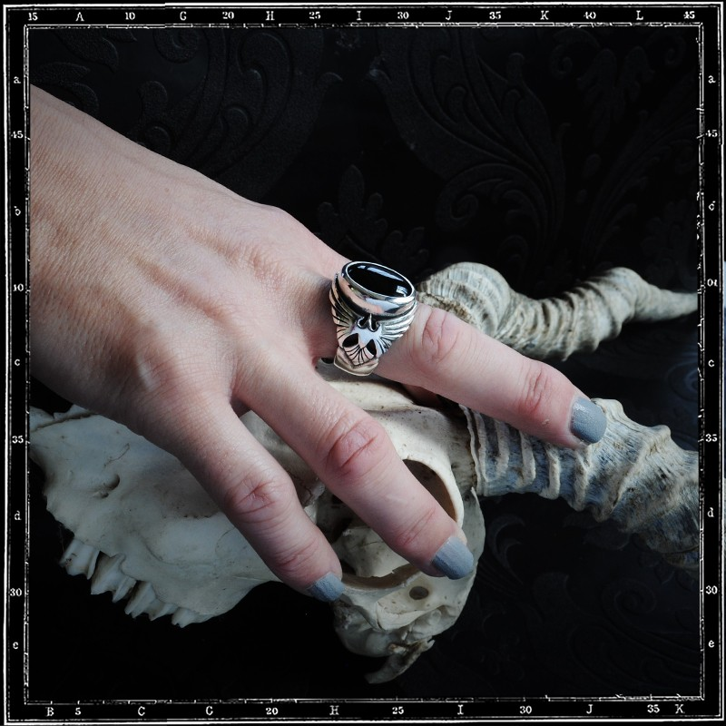Large birds ring