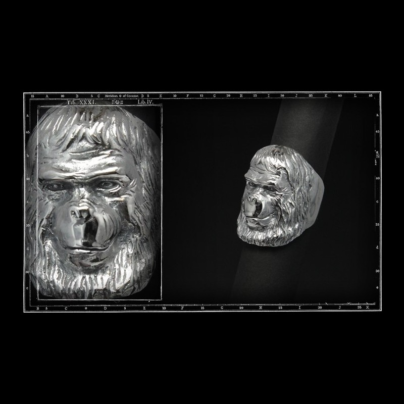 Planet of apes ring 1 zieus