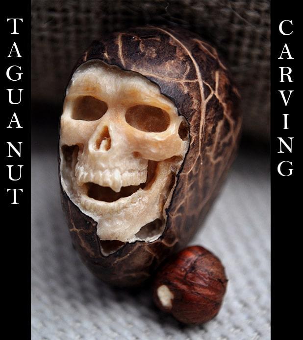 3-Tagua-1.jpg